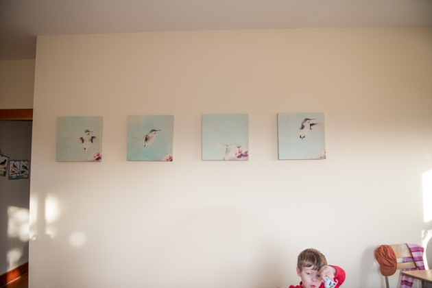 BleuOiseau Photography hummingbird 16x16 canvas set...and my son :D