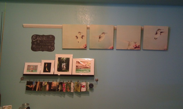 my hummingbird canvas set and some matted prints as well as art cards